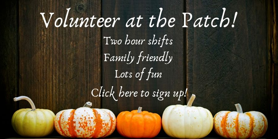 Pumpkin Patch Banners 2019