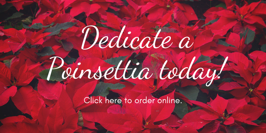 Copy of Copy of Poinsettia Dedication